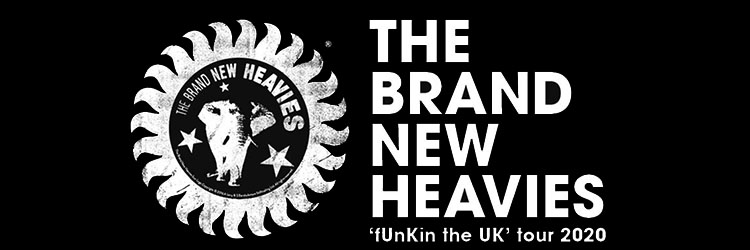 The Brand New Heavies image